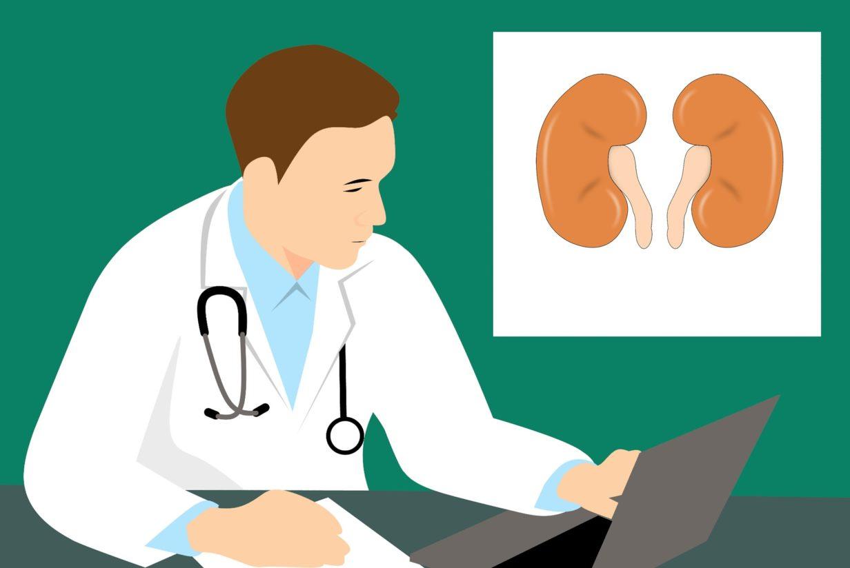 Les différents symptômes d'une infection rénale